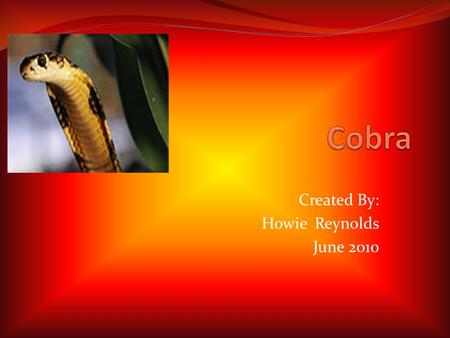 Created By: Howie Reynolds June 2010. Introduction I am like a long slimy hissing stick on the ground. If you get too close I might bite. I am a cobra.
