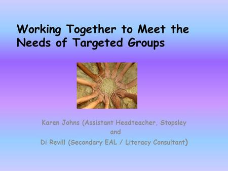 Working Together to Meet the Needs of Targeted Groups Karen Johns (Assistant Headteacher, Stopsley and Di Revill (Secondary EAL / Literacy Consultant )