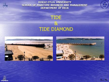 DOKUZ EYLUL UNIVERSITY SCHOOL OF MARITIME BUSINESS AND MANAGEMENT DEPARTMENT OF DECK S elçuk N as SELÇUK NAS TIDE & TIDE DIAMOND.