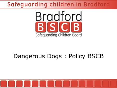 Dangerous Dogs : Policy BSCB. Child Injury Prevention Coordinator Introduction BSCB The Role of the Injury Prevention Coordinator Dangerous Dogs Policy.