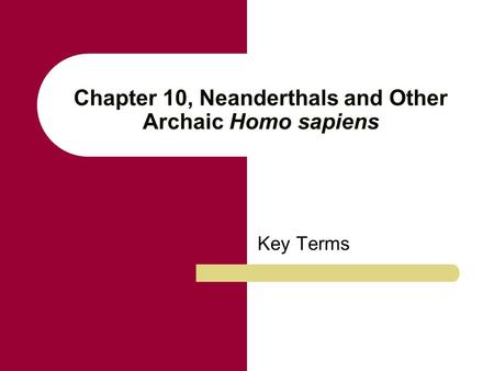 Chapter 10, Neanderthals and Other Archaic Homo sapiens Key Terms.