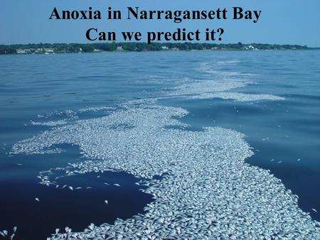 Anoxia in Narragansett Bay Can we predict it?.