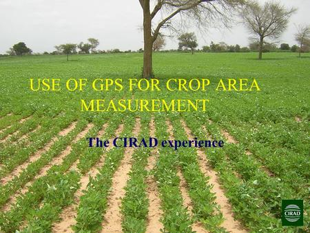 USE OF GPS FOR CROP AREA MEASUREMENT The CIRAD experience.