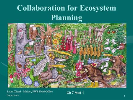 Collaboration for Ecosystem Planning 1 Ch 7 Mod 1 Laura Zicari - Maine, FWS Field Office Supervisor.