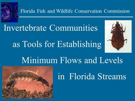 Florida Fish and Wildlife Conservation Commission Invertebrate Communities as Tools for Establishing Minimum Flows and Levels in Florida Streams.