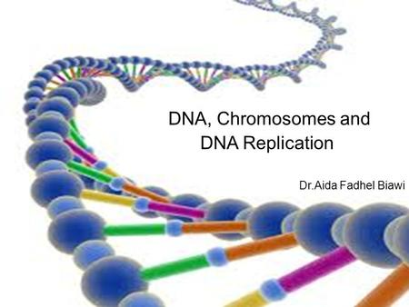 DNA, Chromosomes and DNA Replication Dr.Aida Fadhel Biawi.