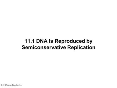 © 2012 Pearson Education, Inc. 11.1 DNA Is Reproduced by Semiconservative Replication.