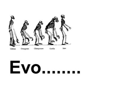 Evo......... Evo........Devo Evo - Devo: Evolution and Development I. Background.