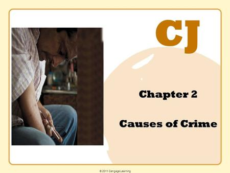 CJ © 2011 Cengage Learning Chapter 2 Causes of Crime.