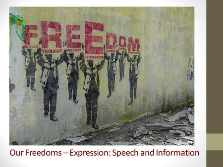 Our Freedoms – Expression: Speech and Information.