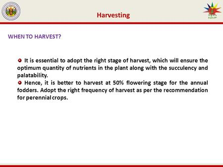 Harvesting WHEN TO HARVEST? It is essential to adopt the right stage of harvest, which will ensure the optimum quantity of nutrients in the plant along.