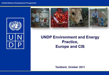 UNDP Environment and Energy Practice, Europe and CIS Tashkent, October 2011.
