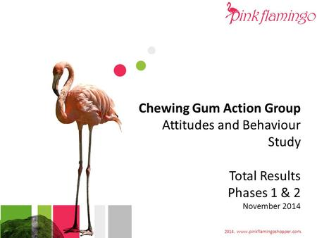 2014. www.pinkflamingoshopper.com. Chewing Gum Action Group Attitudes and Behaviour Study Total Results Phases 1 & 2 November 2014 2014. www.pinkflamingoshopper.com.