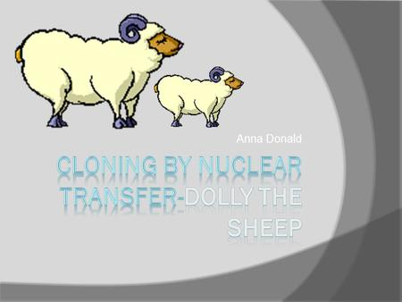 Anna Donald. Nuclear transfer  Nuclear transfer is a process of cloning, where cells are fused together to create a clone. This is how Dolly the sheep.