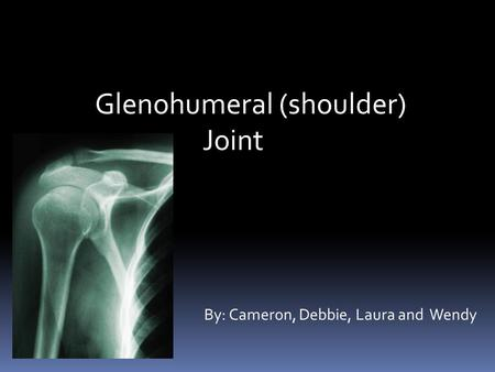 Glenohumeral (shoulder) Joint By: Cameron, Debbie, Laura and Wendy.