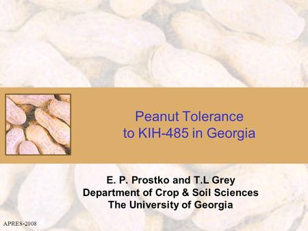 Peanut Tolerance to KIH-485 in Georgia E. P. Prostko and T.L Grey Department of Crop & Soil Sciences The University of Georgia APRES-2008.