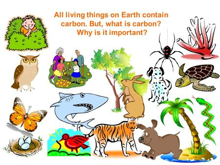 All living things on Earth contain carbon. But, what is carbon? Why is it important?
