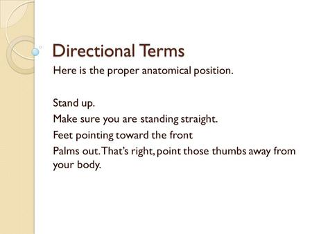 Directional Terms Here is the proper anatomical position. Stand up. Make sure you are standing straight. Feet pointing toward the front Palms out. That's.
