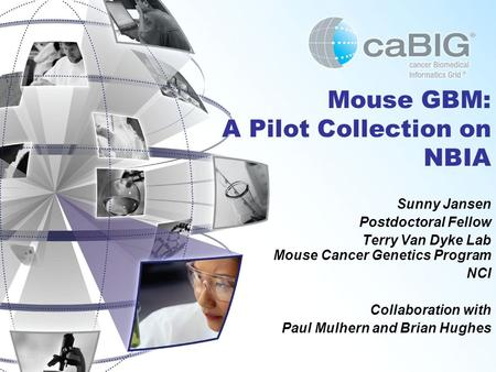 May 2007 Mouse GBM: A Pilot Collection on NBIA Sunny Jansen Postdoctoral Fellow Terry Van Dyke Lab Mouse Cancer Genetics Program NCI Collaboration with.