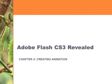Adobe Flash CS3 Revealed CHAPTER 4: CREATING ANIMATION.