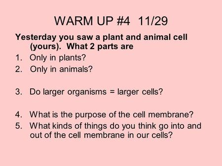 WARM UP #4 11/29 Yesterday you saw a plant and animal cell (yours). What 2 parts are 1. Only in plants? 2.Only in animals? 3. Do larger organisms = larger.