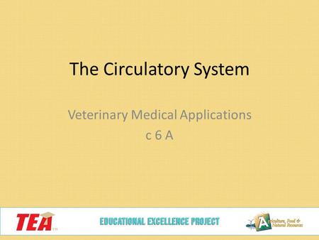 The Circulatory System Veterinary Medical Applications c 6 A.