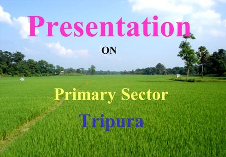 Presentation ON Primary Sector Tripura. PERSPECTIVE PLAN ACHIEVEMENTS AGRICULTURE COMPONENTS1999-2000 Before Perspective Plan 2005-062006-07 Foodgrains.