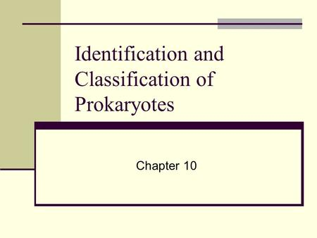 Identification and Classification of Prokaryotes Chapter 10.