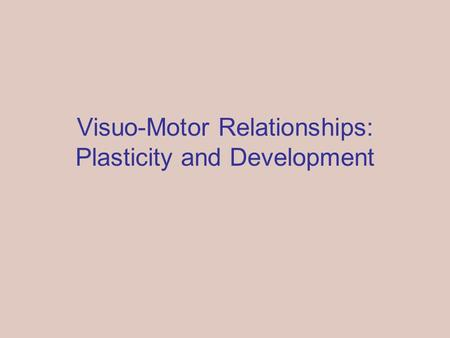 Visuo-Motor Relationships: Plasticity and Development.