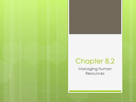 Chapter 8.2 Managing Human Resources. Human Resources Planning & Job Analysis  Classifying employees  Determining job requirements.