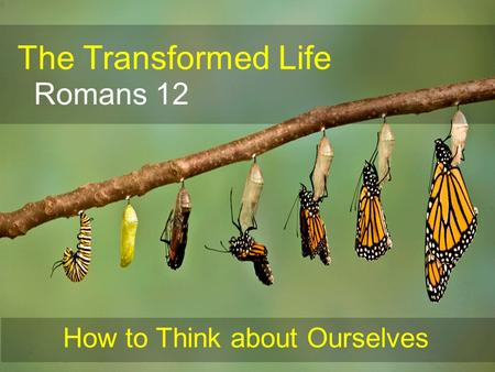 The Transformed Life Romans 12 How to Think about Ourselves.