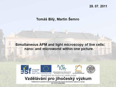 Tomáš Bílý, Martin Šemro 28. 07. 2011 Simultaneous AFM and light microscopy of live cells: nano- and microworld within one picture.