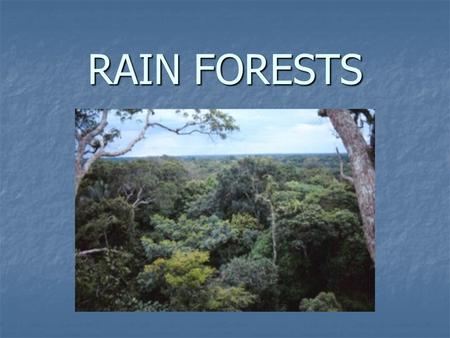 RAIN FORESTS. What is a rain forest? What is a rain forest? A forest region located in the Tropical Zone with a heavy concentration of different species.
