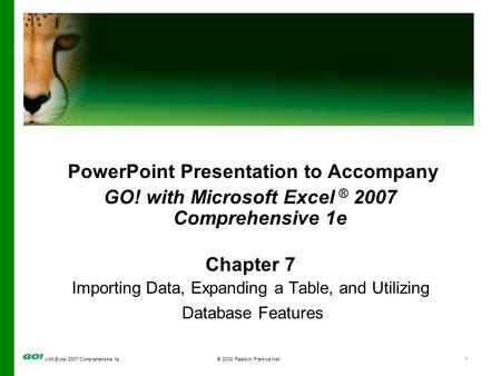 With Excel 2007 Comprehensive 1e© 2008 Pearson Prentice Hall1 PowerPoint Presentation to Accompany GO! with Microsoft Excel ® 2007 Comprehensive 1e Chapter.