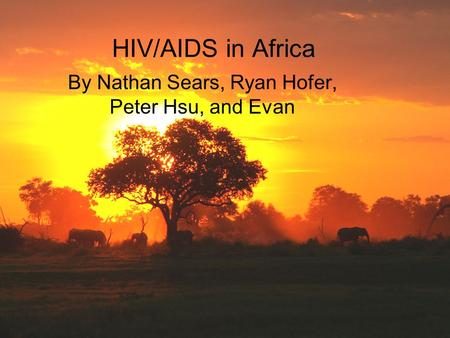 HIV/AIDS in Africa By Nathan Sears, Ryan Hofer, Peter Hsu, and Evan.