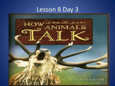 Lesson 8 Day 3 T244. Question of the Day What are some unusual things you have seen animals do? What if anything, do you think the animals were trying.