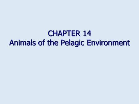 CHAPTER 14 Animals of the Pelagic Environment. How to avoid sinking Increase buoyancy Increase buoyancy Gas containers Gas containers Rigid container.