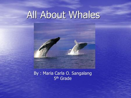All About Whales By : Maria Carla O. Sangalang 5 th Grade.