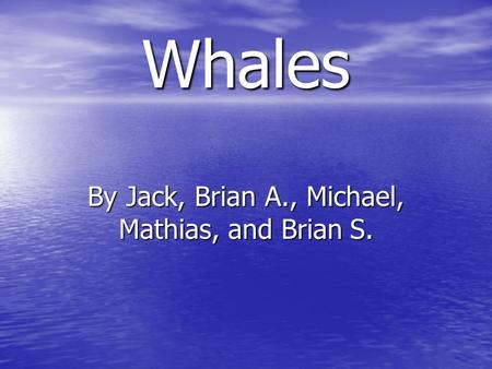 Whales By Jack, Brian A., Michael, Mathias, and Brian S.