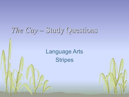 The Cay – Study Questions