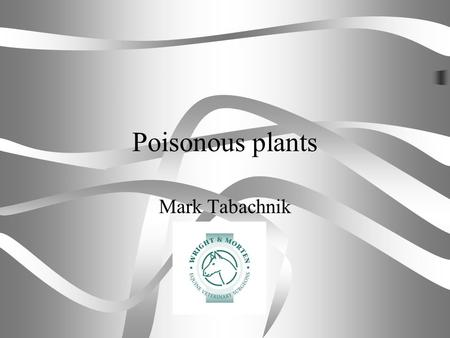 Poisonous plants Mark Tabachnik. content Pasture management is an important part of looking after horses. Plant poisonings are extremely rare, this short.