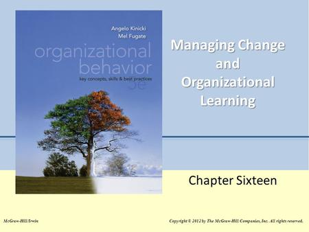 Managing Change and Organizational Learning