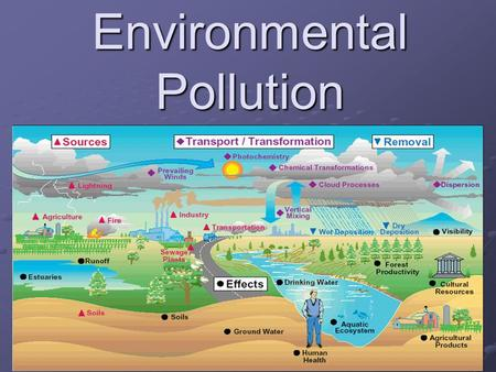 Environmental Pollution. OUR ENVIRONMENT The air, water, minerals, organisms, and all other external factors surrounding and affecting a given organism.