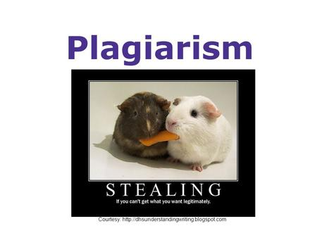 Plagiarism Courtesy: