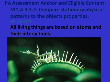 PA Assessment Anchor and Eligible Content: S11.A.3.3.2: Compare stationary physical patterns to the objects properties. KEY CONCEPT All living things are.