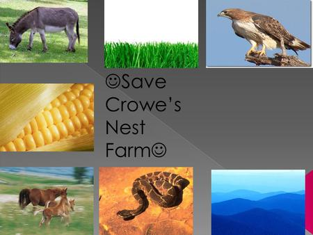 Save Crowe's Nest Farm. Now, that there is a drought we do not have a enough water to give to the animals and plants.