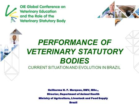 PERFORMANCE OF VETERINARY STATUTORY BODIES CURRENT SITUATION AND EVOLUTION IN BRAZIL.