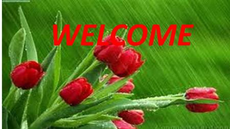 WELCOME. INTRODUCE NAME OF TEACHER Md. Shofikul Islam Assistant teacher (English ) Bonkura High School Nalitabari, Sherpur. ID No : - 13 Subject : - English.
