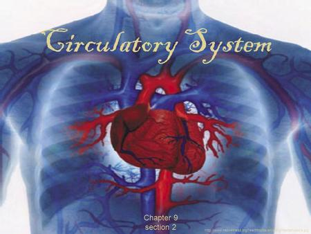 Chapter 9 section 2 Circulatory System