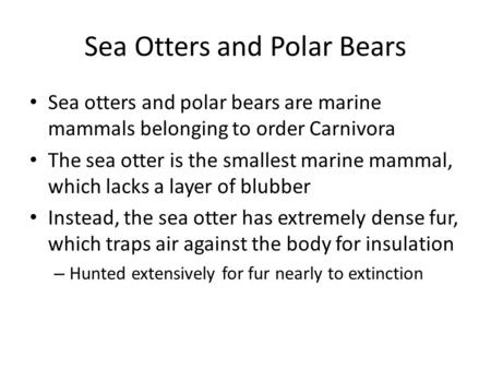 Sea Otters and Polar Bears Sea otters and polar bears are marine mammals belonging to order Carnivora The sea otter is the smallest marine mammal, which.
